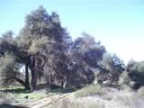 2 Willow Canyon - Photo 6