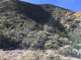 28082 Williams Canyon - Photo 14