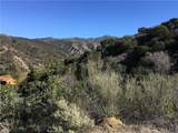 28082 Williams Canyon - Photo 17