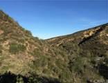 28082 Williams Canyon - Photo 10