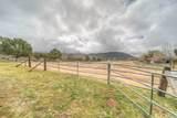 51441 Tule Peak Road - Photo 3
