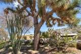 7825 Joshua View Drive - Photo 3