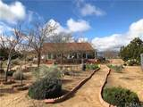7328 Yucca Terrace Drive - Photo 2