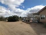 7328 Yucca Terrace Drive - Photo 6