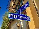 1310 Orange Blossom Way - Photo 2