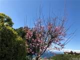 1588 Via Zurita - Photo 2