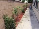 158 Desert Bloom - Photo 12