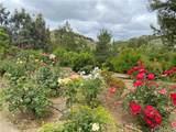 43218 Sandia Creek Drive - Photo 5