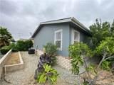 26133 Seaforthia Palm Drive - Photo 12