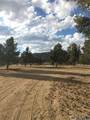 98443 Sierra Meadows Road - Photo 21