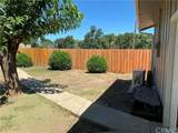 3519 Madrone Street - Photo 23