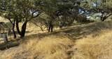 5875 Prancing Deer - Photo 7