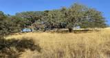 5875 Prancing Deer - Photo 8
