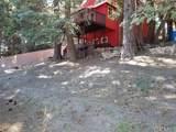 31705 Silver Spruce Drive - Photo 3