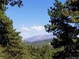 31705 Silver Spruce Drive - Photo 6