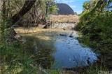 10925 Seigler Canyon Road - Photo 2