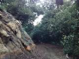 32733 Mesa Lilac Rd - Photo 11