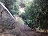 32733 Mesa Lilac Rd - Photo 13