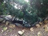 32733 Mesa Lilac Rd - Photo 17