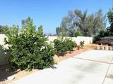 20652 Cashew Street - Photo 40