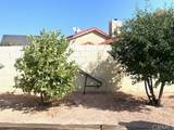 20652 Cashew Street - Photo 41