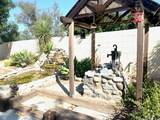 20652 Cashew Street - Photo 48