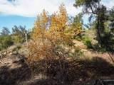0 Black Canyon - Photo 3