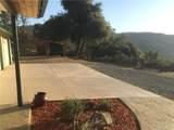 37101 Sundance Drive - Photo 15