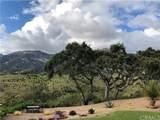 2984 Arriba Way - Photo 42