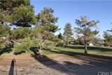 14257 Burning Tree Drive - Photo 41