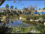 12205 Carmel Vista Road - Photo 14