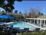 12205 Carmel Vista Road - Photo 15