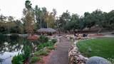 47100 Sandia Creek Drive - Photo 4