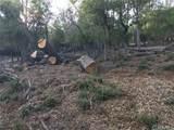 3607 Pine Terrace - Photo 5