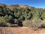 13590 Oak Mountain - Photo 6