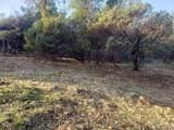 16729 Hawks Hill - Photo 4