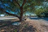 295 Oak Glen - Photo 14