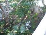 26727 Avenida Las Palmas - Photo 6