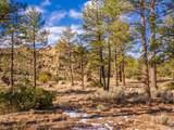 60795 Table Mountain - Photo 13