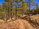 60795 Table Mountain - Photo 28