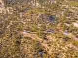 60795 Table Mountain - Photo 31