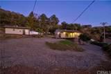 2902 Douglas Terrace - Photo 38