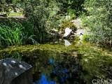 41999 Calle De Suenos - Photo 40