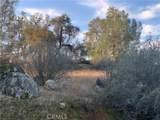 3224 Silver Bush - Photo 22