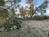 3224 Silver Bush - Photo 23