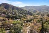 28892 Modjeska Canyon Road - Photo 29
