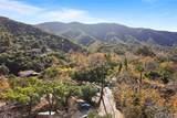 28892 Modjeska Canyon Road - Photo 30
