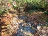 28892 Modjeska Canyon Road - Photo 44