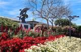 33541 Moonsail Drive - Photo 29