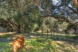 1666 Verde Canyon Road - Photo 31